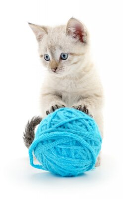 Naklejka Kot z motka