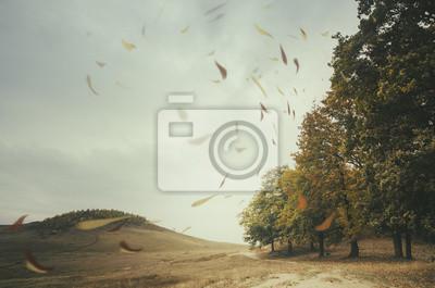 Krawędź lasu z liśćmi skierowany przez wiatr