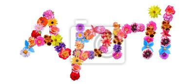 Naklejka Kwiat Nazwa kwietnia