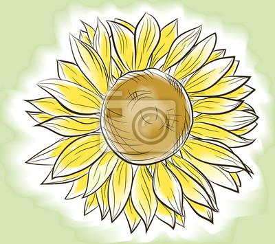 Kwiat słonecznika malowane naśladując akwarela