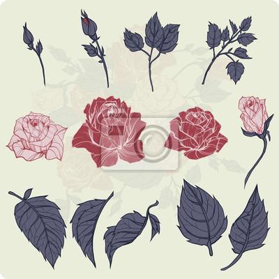 Kwiat ustawić.