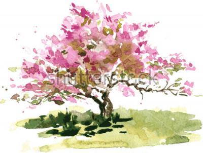 Naklejka kwiat wiśni, rysunek przez akwarela, akwarela szkic kwitnących kwiatów jabłko, malarstwo ogród, ręcznie zastosować sztukę tło wektor