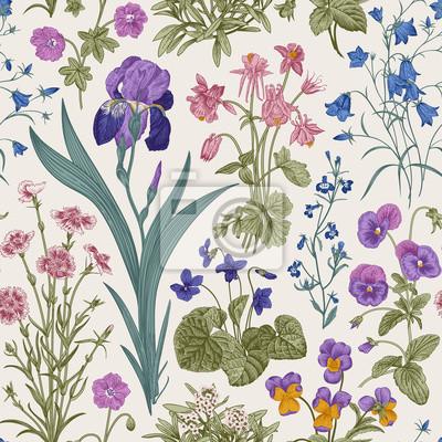 Kwiatowy wzór. Ogród za dnia. Wektorowa rocznik botaniczna ilustracja.