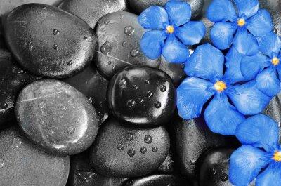 Naklejka Kwiaty i kamienie