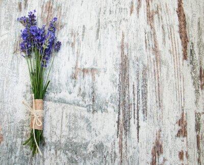 Naklejka kwiaty lawendy