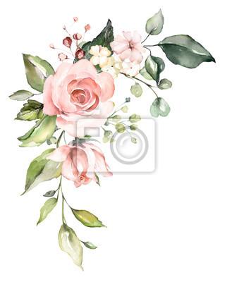 kwiaty w akwarela. ilustracja kwiatowa, liść i pąki. Botaniczny skład na ślub lub karty z pozdrowieniami. gałąź kwiatów - róże abstrakcji