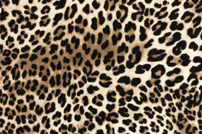 Naklejka Lampart fablic tekstury. Tło włókienniczych moda.