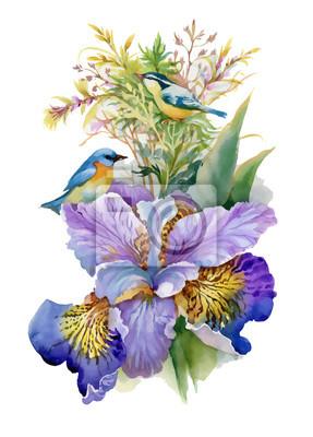 Lato akwarela kwiaty i ptaki na białym tle.