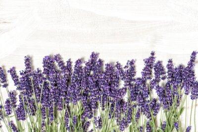 Naklejka Lavender kwiaty na białym tle tekstury drewniane