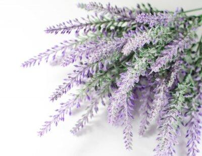 Naklejka Lavender oddział
