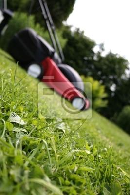 Lawnmower na trawie