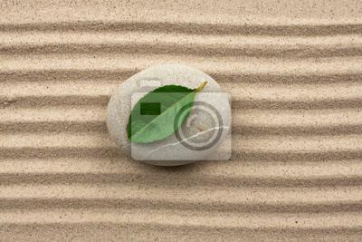 Leaf na skale w piasku