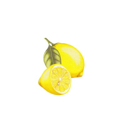 Naklejka Lemon ilustracji