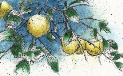 Naklejka Lemon tree branch
