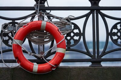 Life Buoy attached to a matal panel.