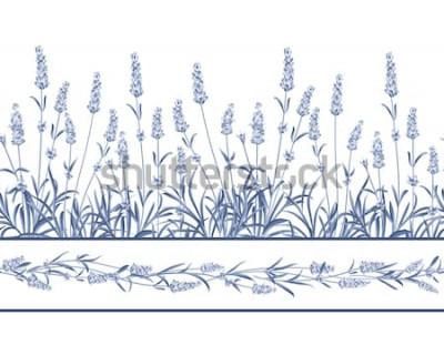 Naklejka Linia ramy bez szwu lawendy. Wiązka lawenda kwitnie na białym tle. Ilustracji wektorowych.
