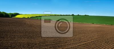 Naklejka linie pola gospodarstwa gruntów ornych i rapeflowerfield krajobraz
