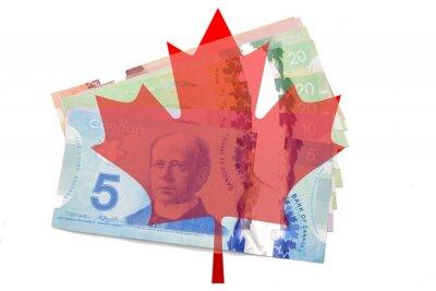 Naklejka Liść klonu kanadyjskiego z dolarów na białym tle
