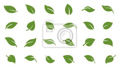 Naklejka liście zielone