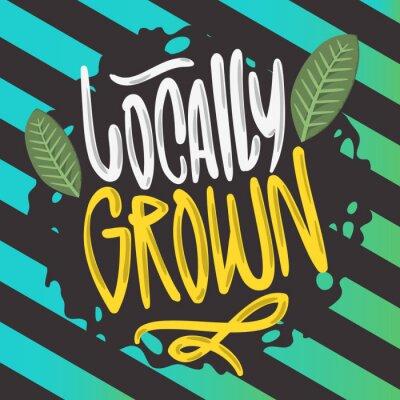 Lokalnie uprawiana ręcznie rysowana szczotka napis Kaligrafia Graffiti Tag Styl Typ Logo Projekt Grafika wektorowa