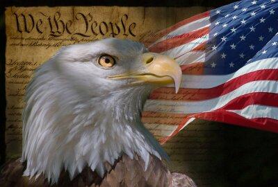łysy orzeł i flaga amerykańska
