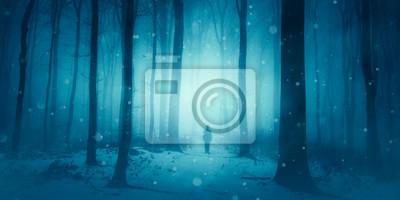 magiczna scena zimowa, człowiek idący po zaśnieżonej ścieżce w lesie