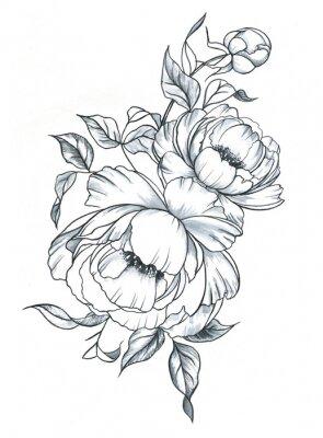 Naklejka Malowane ręcznie rysowane tuszem i akordami akwarelowymi w stylu graficznym. Kobiecy tatuaż szkic, wiosna kwiatowy kwitnienie, czarno-białe ilustracji.