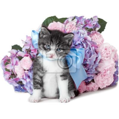 Mały kotek z kokardką i kwiatami