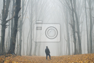 Man in tall forest in fog or mist. Dark spooky forest with man wondering in the nature with tourist bag