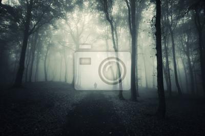 man walking on path through a dark forest