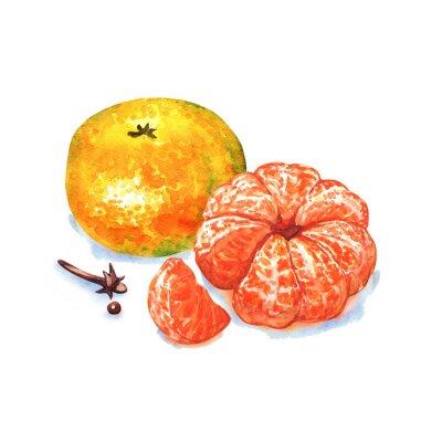 Naklejka mandarynka lub mandarynki owoce na białym tle