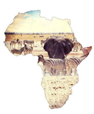 Naklejka Mapa Afryki koncepcja kontynent, safari na słoniach z wodopoju