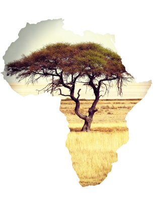 Naklejka Mapa Afryki koncepcja kontynent z akacji