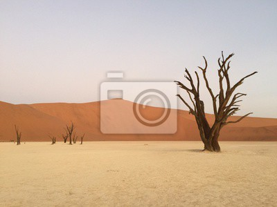 Naklejka Martwe Vlei, Namibia