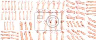 Naklejka MEGA SET of Multiple Male Caucasian hand gestures isolated over the white background, set of multiple images.