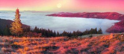 Naklejka Mgła w jesieni