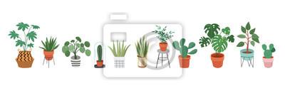 Naklejka Miejska dżungla, modny wystrój domu z roślinami, donice, kaktusy, liście tropikalne