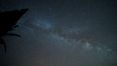 Naklejka Milky way over Provence sky