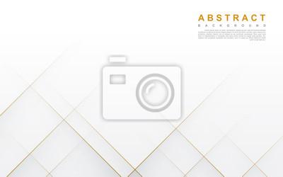 Naklejka Modern abstract light silver background vector. Elegant concept design with golden line.