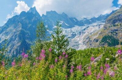Naklejka Mont Blanc Masywne Scenery