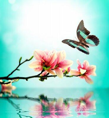 Naklejka Motyl i kwiat magnolii