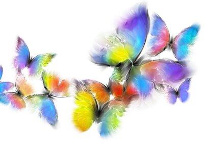 Naklejka motyle