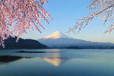 Naklejka Mount Fuji, widok od jeziora Kawaguchiko