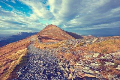 Naklejka Mountain Trail