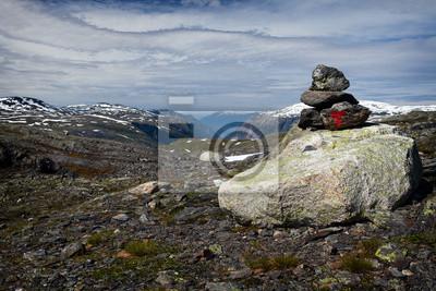 Narodowy Hardangervidda w Norwegen