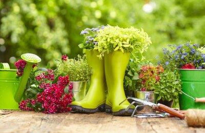 Naklejka Narzędzia ogrodnicze na świeżym powietrzu starym stole drewna