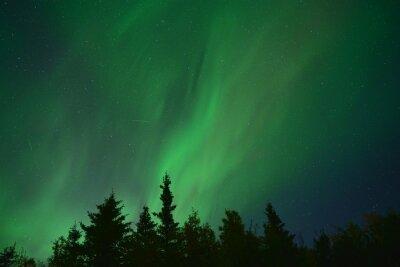 Naklejka Natural light display of aurora with dynamic patterns of brilliant lights