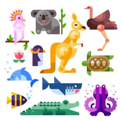 Naklejka Nice flat Australian animals: kakadu, kangaroo, parrot, koala, emu, ostrich, dolphin, penguin, turtle, shark, clown fish, crocodile, octopus. Flat vector illustration set.