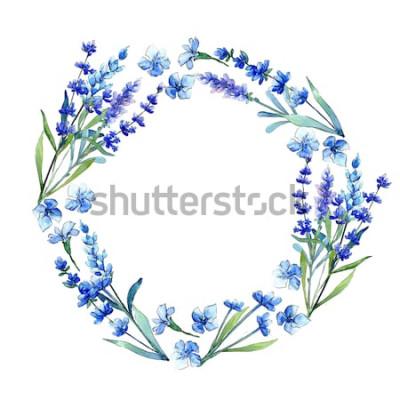 Naklejka Niebieska lawenda. Kwiatowy botaniczny kwiat. Rama wiosna wildflower liść w stylu przypominającym akwarele. Aquarelle wildflower na tle, tekstury, wzór otoki, ramki lub ramki.