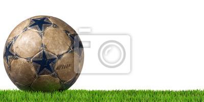 Niebieski i brązowy Piłka nożna (Piłka nożna) na białym tle z zieloną trawę